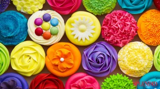 cupcakes-colorful-cake-sweet (1)