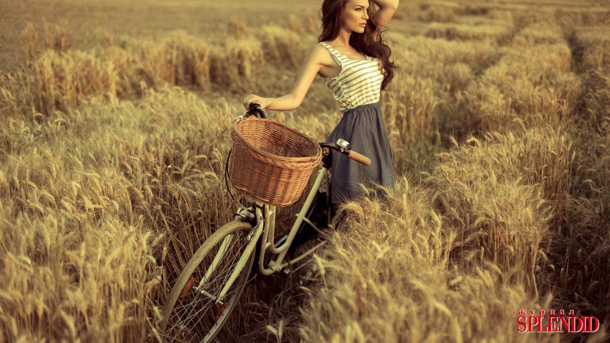 love-on-the-bike-bike