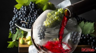 glass-wine-grapes-drink-vino