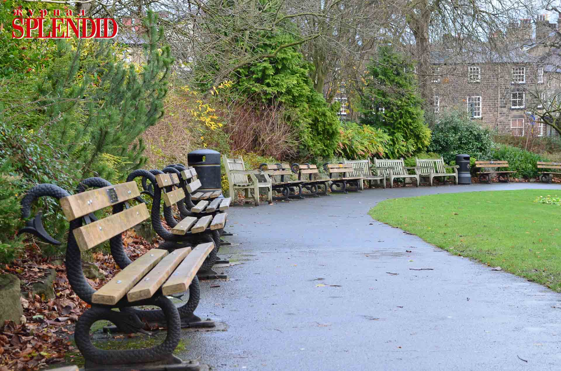 benches-in-the-park-13230083340qR